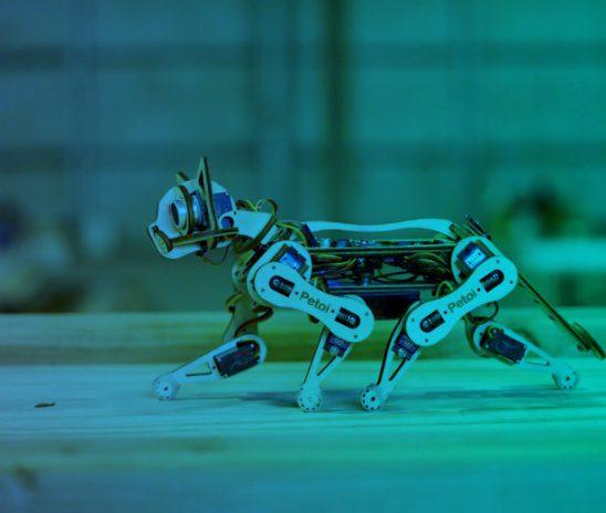 Raspberry Pi, the tiny PC for Robots